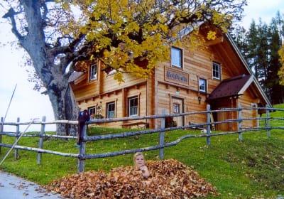 """Ferienhaus """"Bichlhütte"""" in Pruggern, Schladming-Dachstein"""