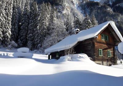 Waldhäuslhütte