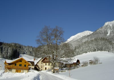 Winter am Michlbauerhof