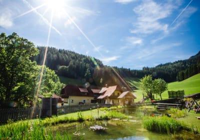 Naturbadeteich 2