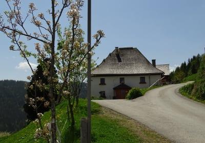 Fritz in Laasen