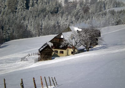 Ferienhaus Prosi