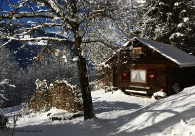 Kräutlhütte Auer