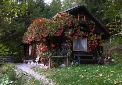 Kräutlhütte Auer Herbst 2019