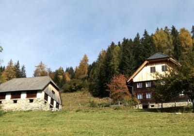 Berghütte Reissnerhof mit Stall