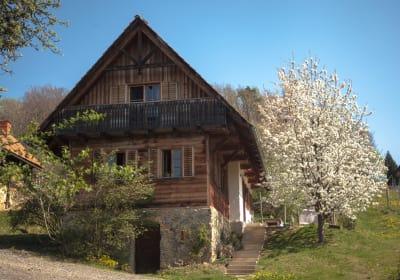 Ferienhaus am Rosenberg