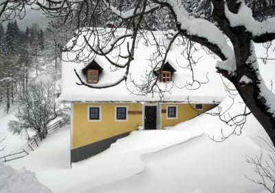 Cabin in a wintry landscape