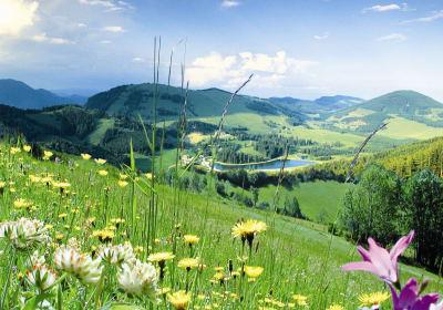 Naturpark Almenland - unsere Region