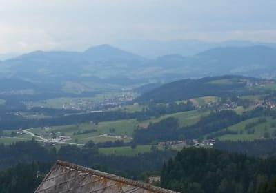 Biohof Schweiger - Hansl in Greith