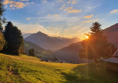Bergchalet Haflingerherz