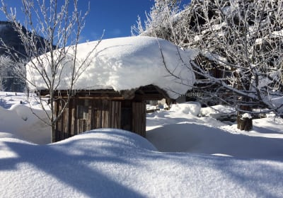Entenhaus im Winter
