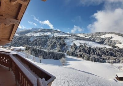 Panoramablick Weihnachten 2020