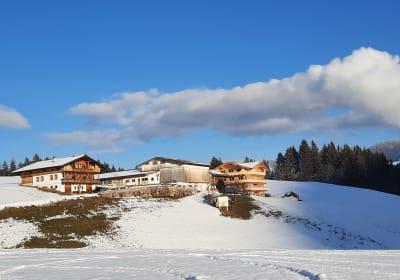 Biobauernhof Madlstatthof - SonnenAppartements