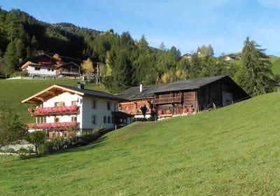 Matzenhof im Sommer