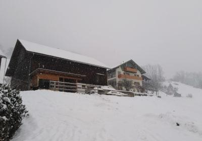 Mottnerhof