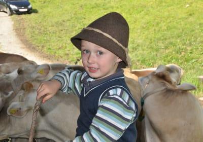 Wahre Freunde am Bauernhof