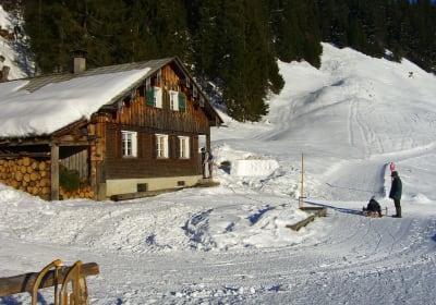 Panoramahütte Sonderdach – die Almhütte im Bregenzerwald