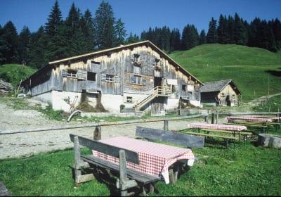 Alpgastgarten auf der Alpe Obere Falz