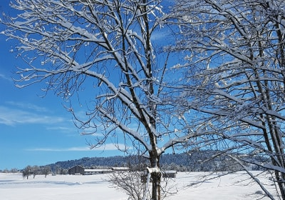 Nahturhof im Winter