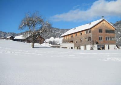 Ferienhof Schweizer im Winter