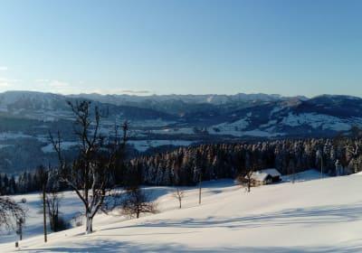 Winter - Blick aus dem Fenster