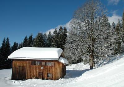 Birihof Winter