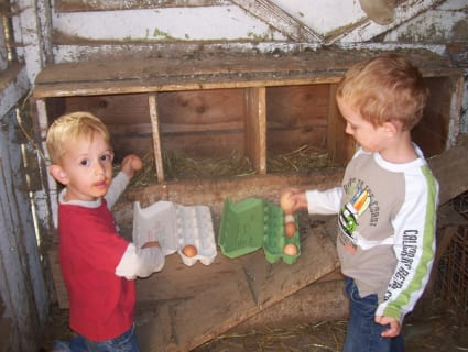 Kinder beim Eieraufheben