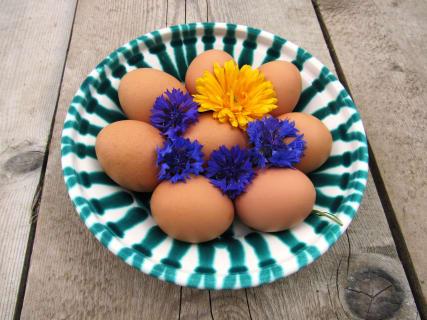 täglich frische Eier von den Hühnern am Hof