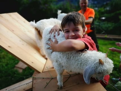 Jakob bei den Ziegen