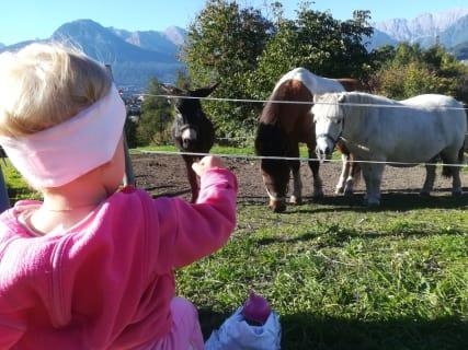Kinder, Tiere, Bauernhof