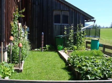 Unser kleiner Garten