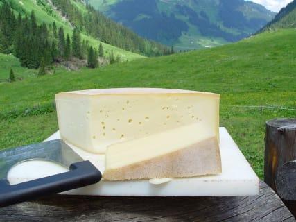 Käse aus eigener Erzeugung