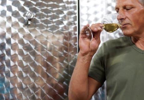 Der heurige Wein schmeckt vorzüglich