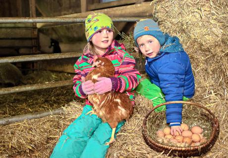 Kinder lieben Huhn und Ei