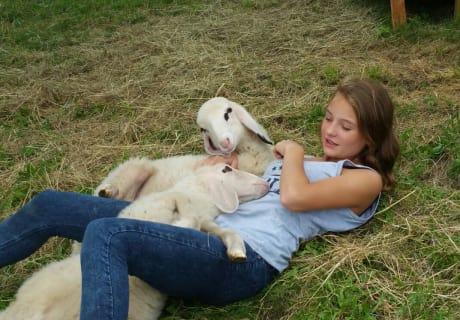 Mäggi mit Schafe