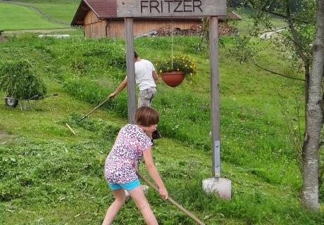 Gras holen für die Kuh