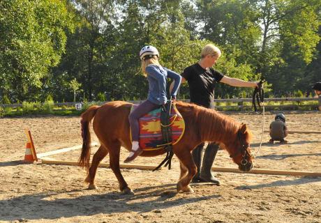 Febs - verkehrt am Pferd
