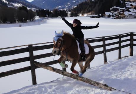 Reiten im Winter mit unseren Hafis