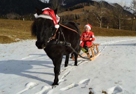 Weihnachtsmann mit seinem Pony