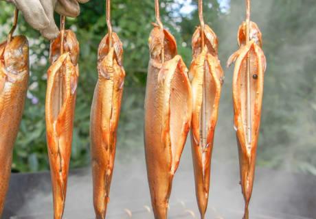 Räucherfische vom Hofladen, freitags geöffnet