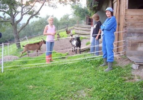 Kinder bei den Ziegen