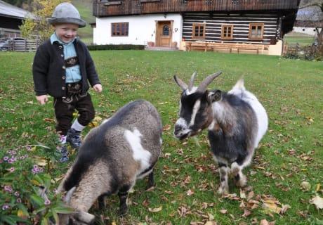 Elias mit den beiden Ziegen Berti und Gerti
