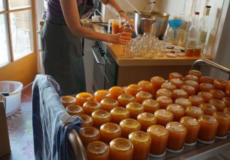 Einkochen von der Wachauer Marillenmarmelade