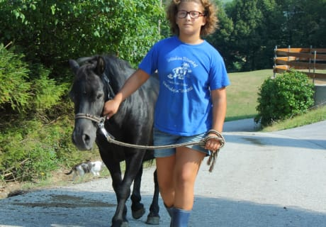 Ponnyführen