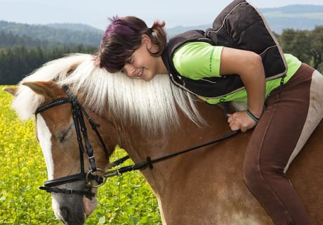 Bauer & Wirt Langthaler - Claudia - Pferde