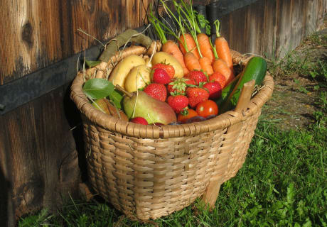 Gemüse und Obst aus dem Bauerngarten