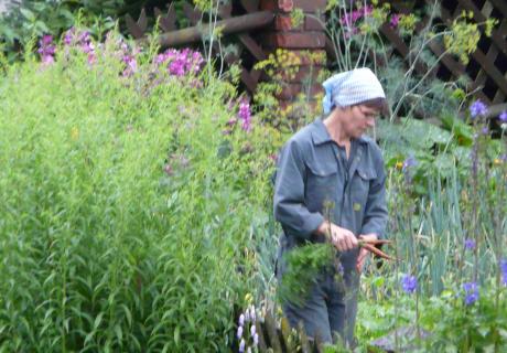 Bäuerin im Garten