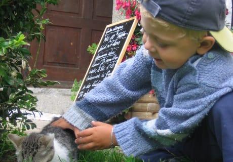 Spielen mit den Katzen am Biohof Schafflhof