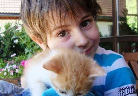 Tobias mit Kätzchen