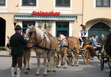 Die Haflinger unseres Pferdeland-Betriebs nehmen am Georgiritt in Weyer teil.